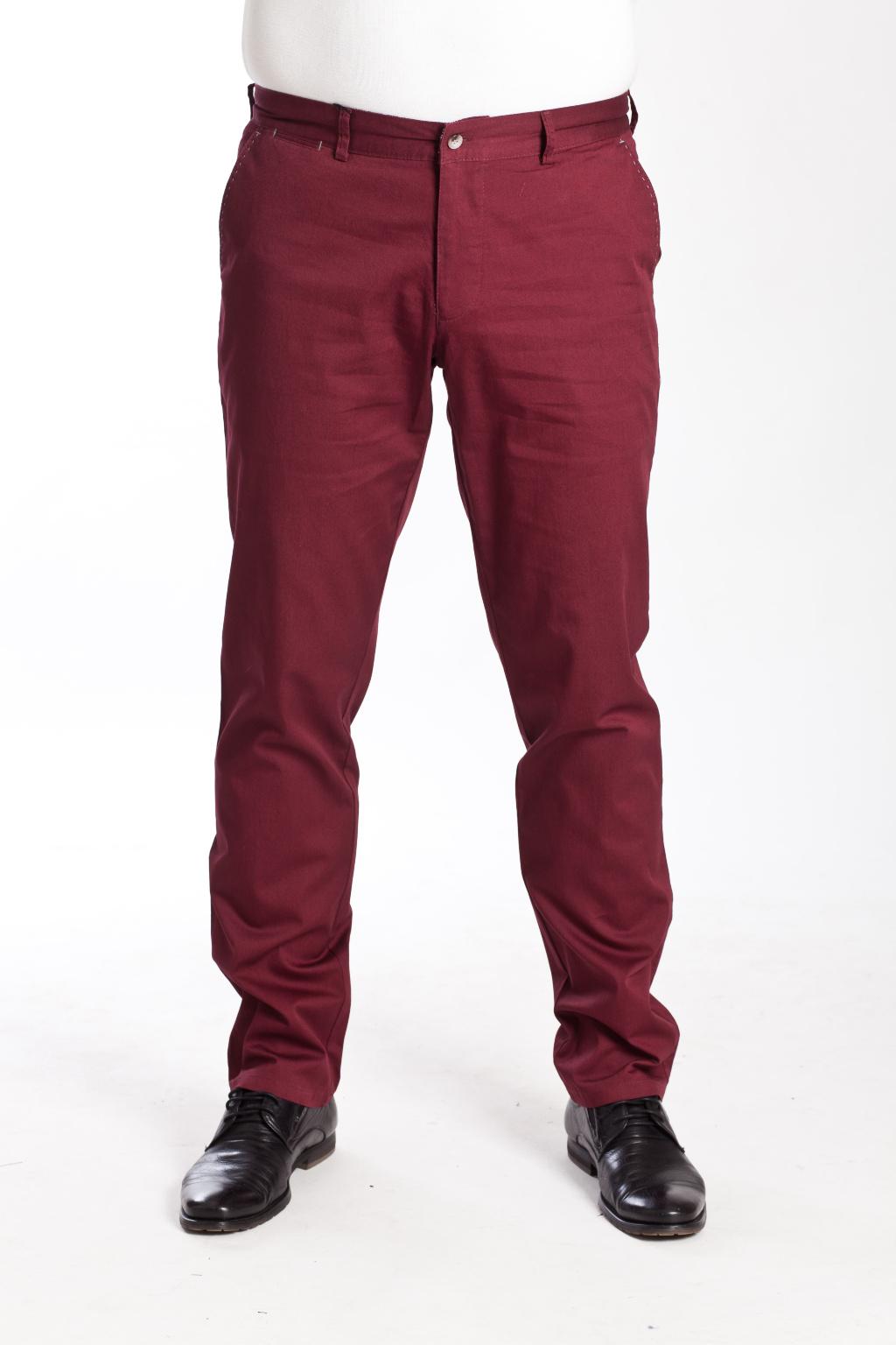 501081932a184 Мужские брюки в стиле Casual в интернет-магазине «Мир брюк» | Купить ...